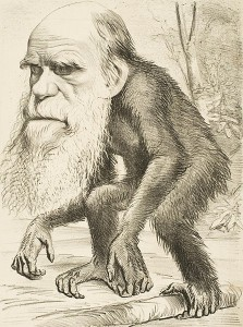 """A Venerable Orang-outang"", a caricature of Charles Darwin as an ape published in The Hornet, a satirical magazine, 1872"